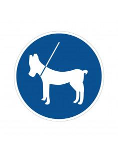 pictogram honden aan de lijn, blauw wit, rond